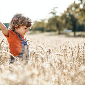 dziecko bawi się w zbożu